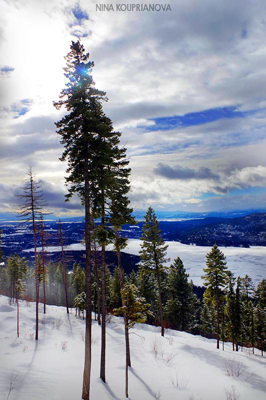 mountain winter gray 3 800 px url.jpg