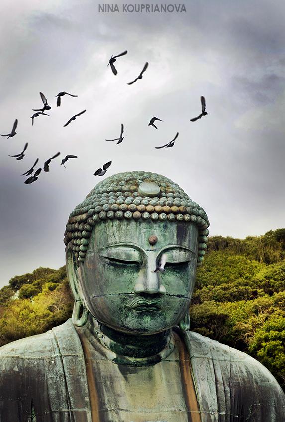 great buddha birds 850 px url.jpg