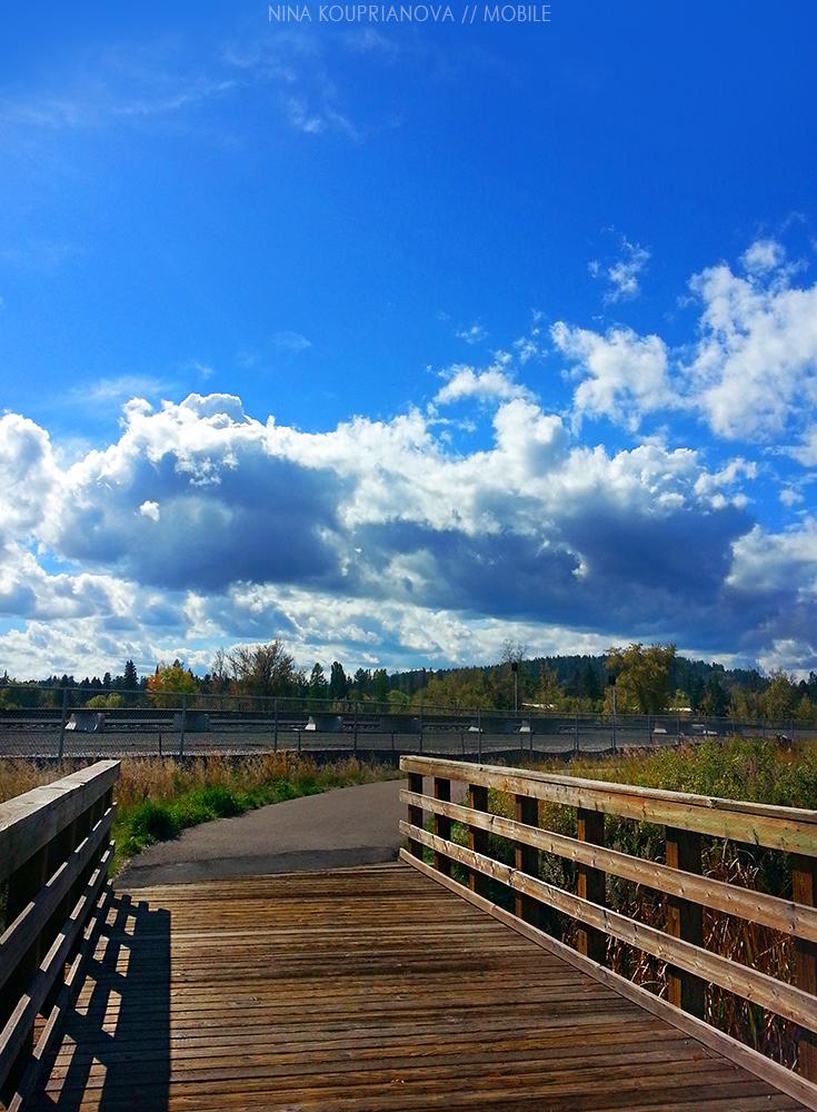 autumn bridge 1000 px.jpg