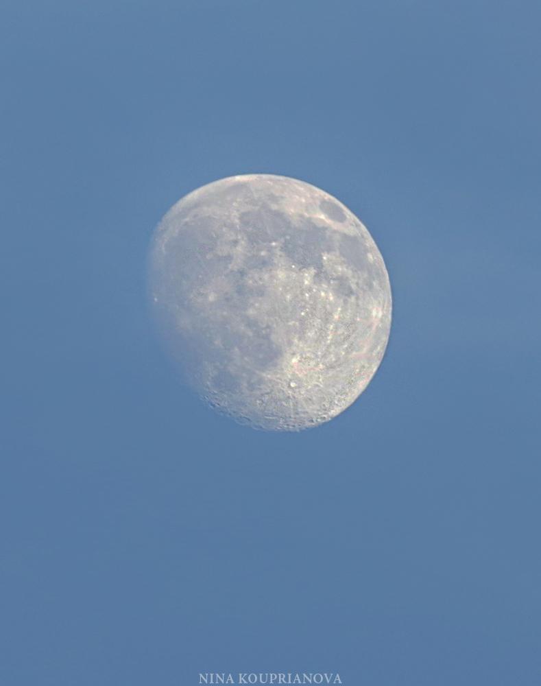 moon june 28 a 1000 px.jpg