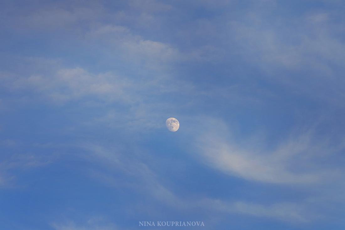 moon june 28 b 1100 px url.jpg