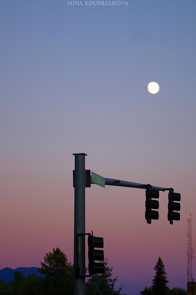 moon street light 1 1000 px.jpg