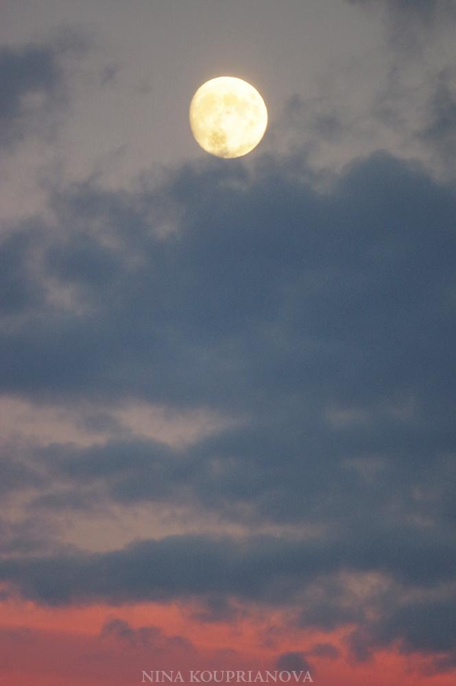 moon nov 23 c 1000 px.jpg