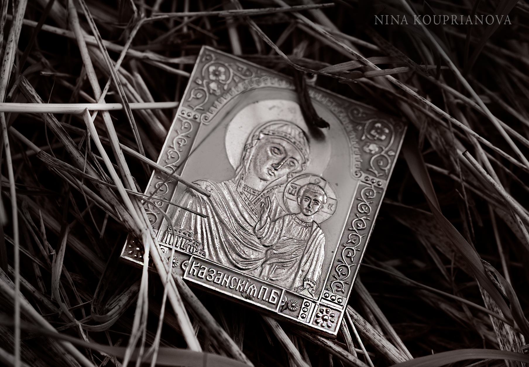 icon in grass 1800 px.jpg