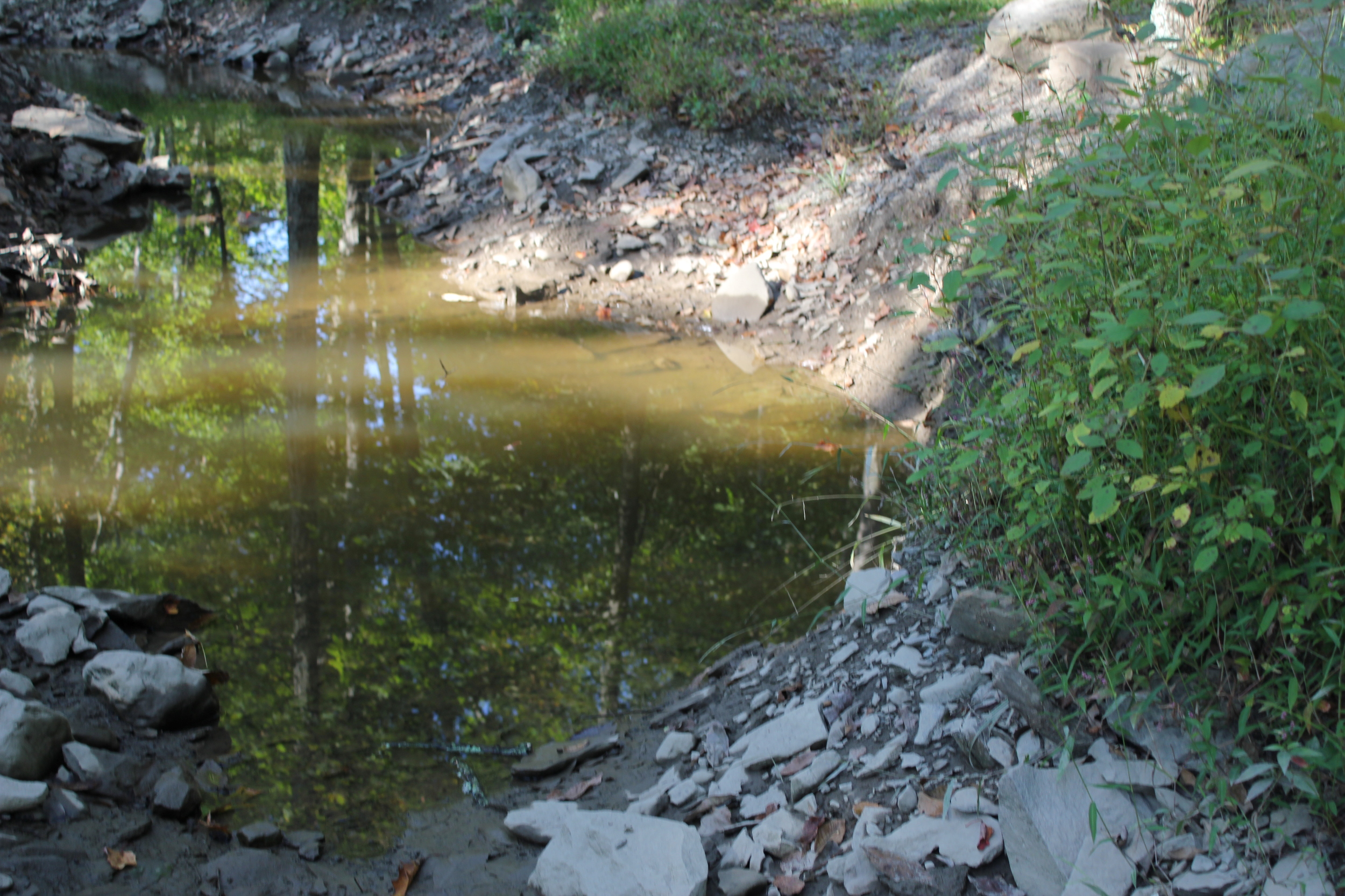 A quiet creek near the Airstream.