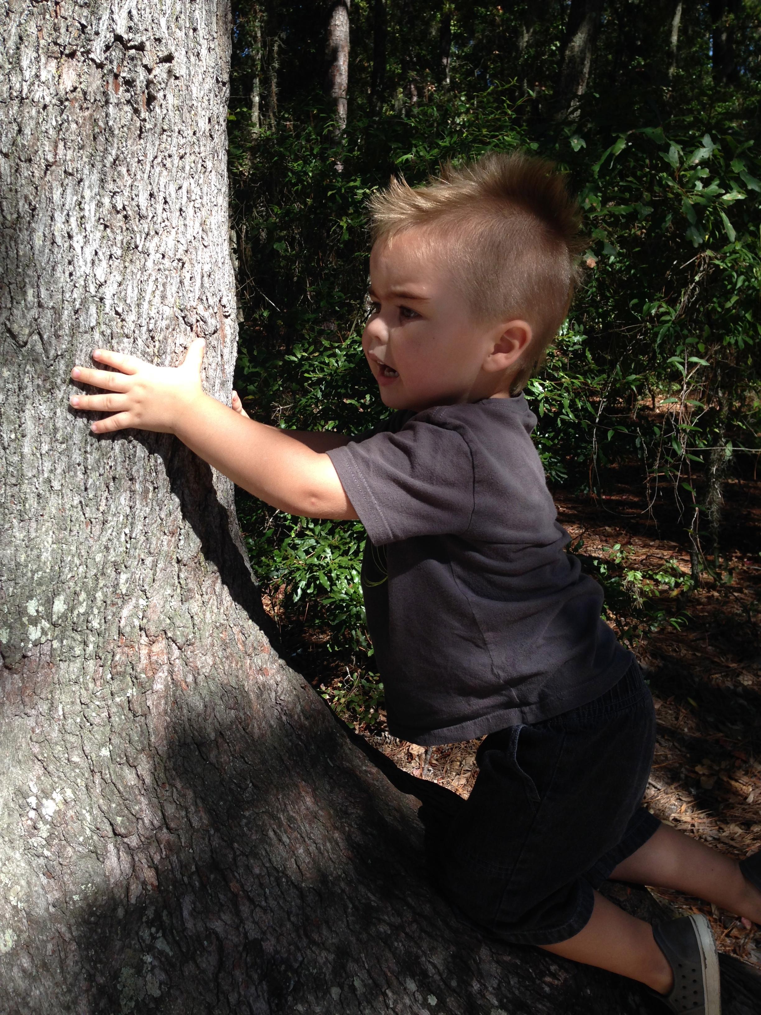 MJ2 Climbing a Tree