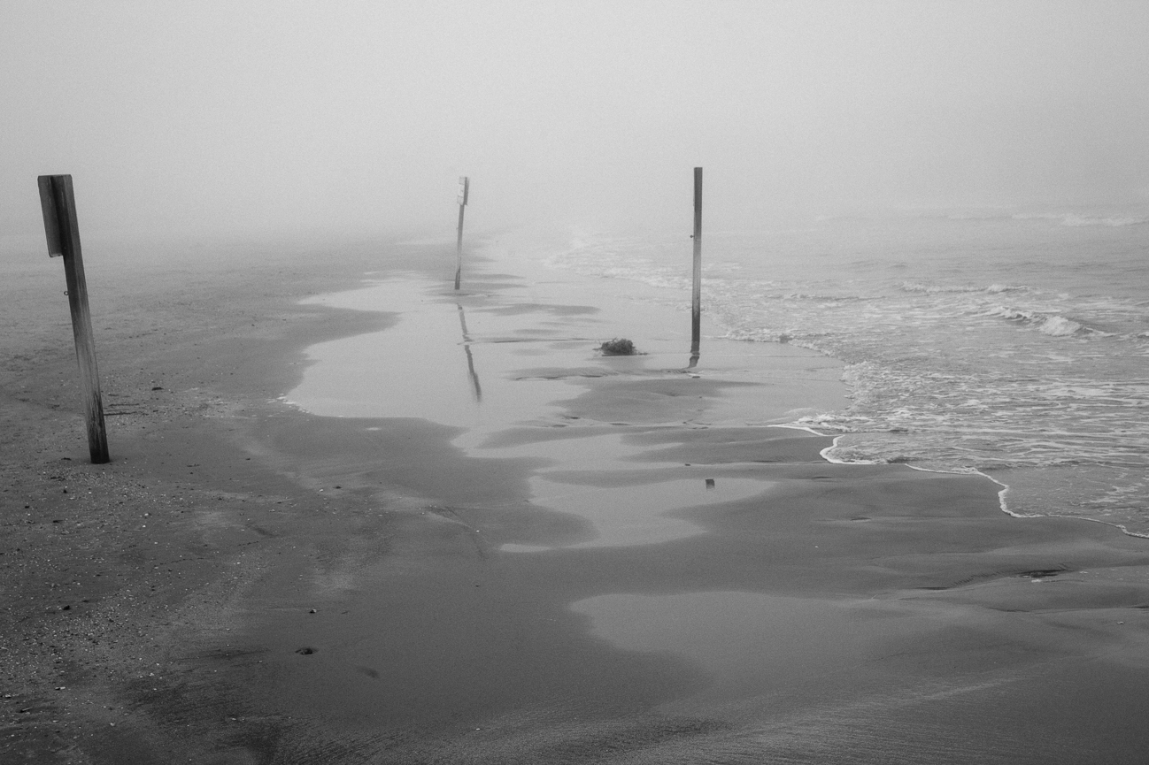 Galveston, Kim Ward Photography-14.jpg