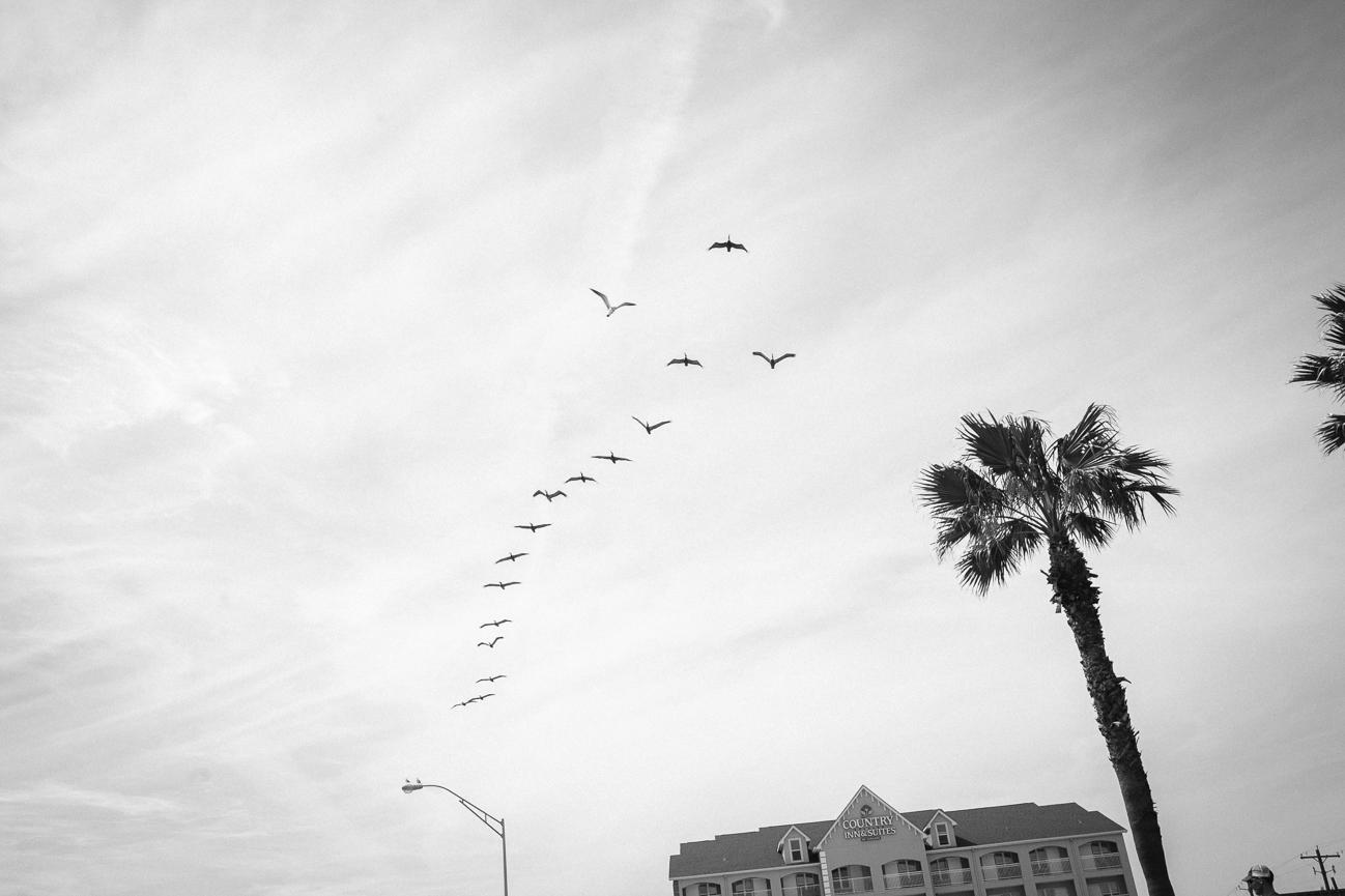 Kim Ward Photography-127.jpg