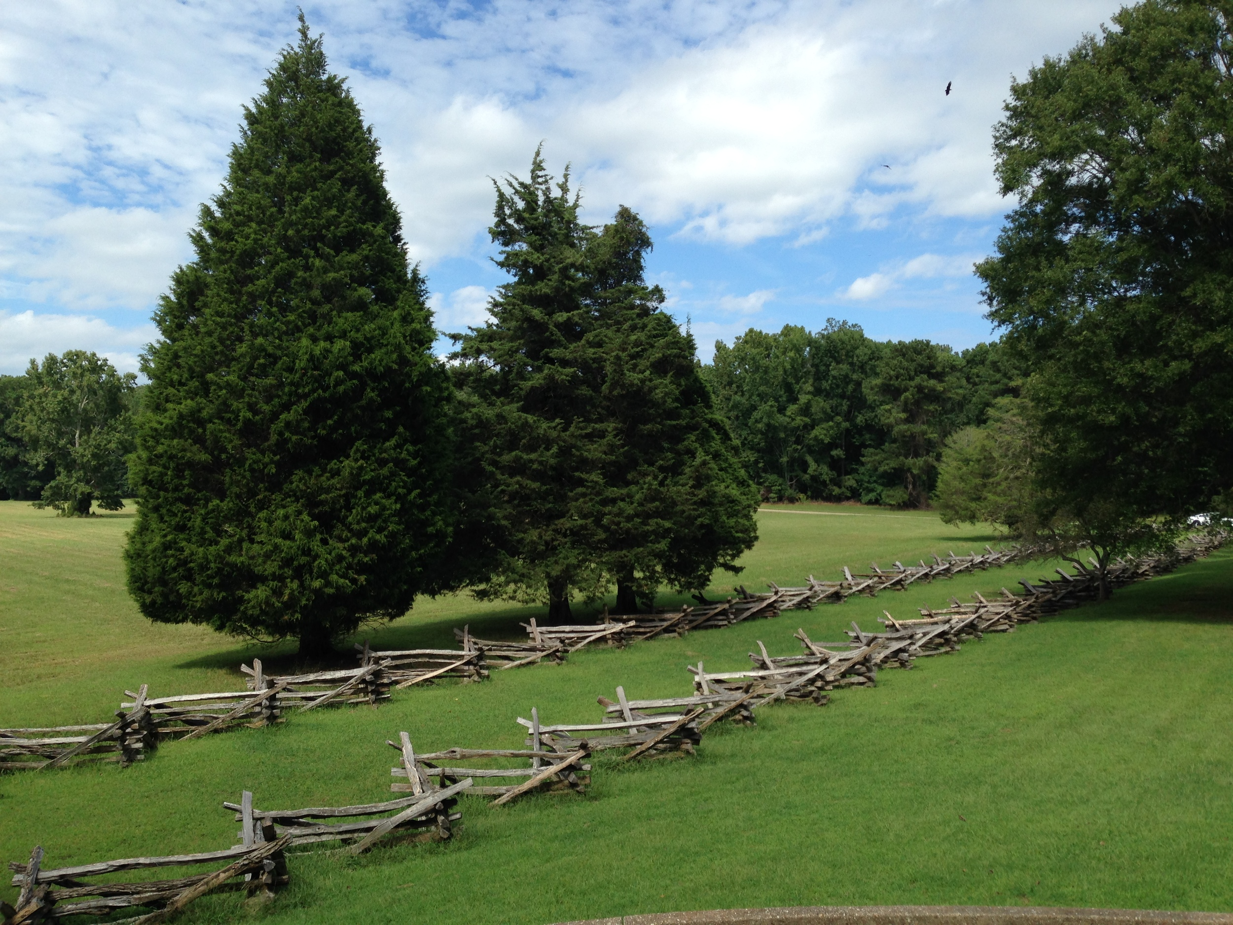 The surrender field.  The fence line marks the position in which the victorious French and American troops would have stood while the defeated British passed between enroute to surrendering their weapons.