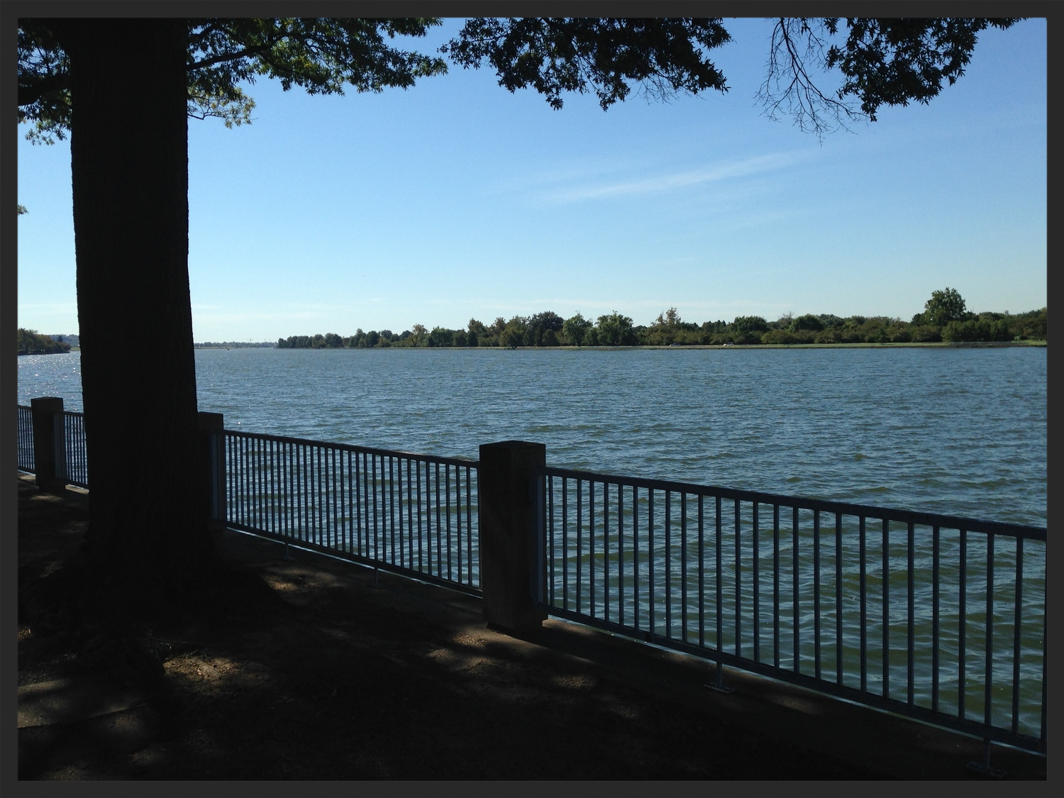 The view of Hain's Point from the DC's Southwest Waterfront.