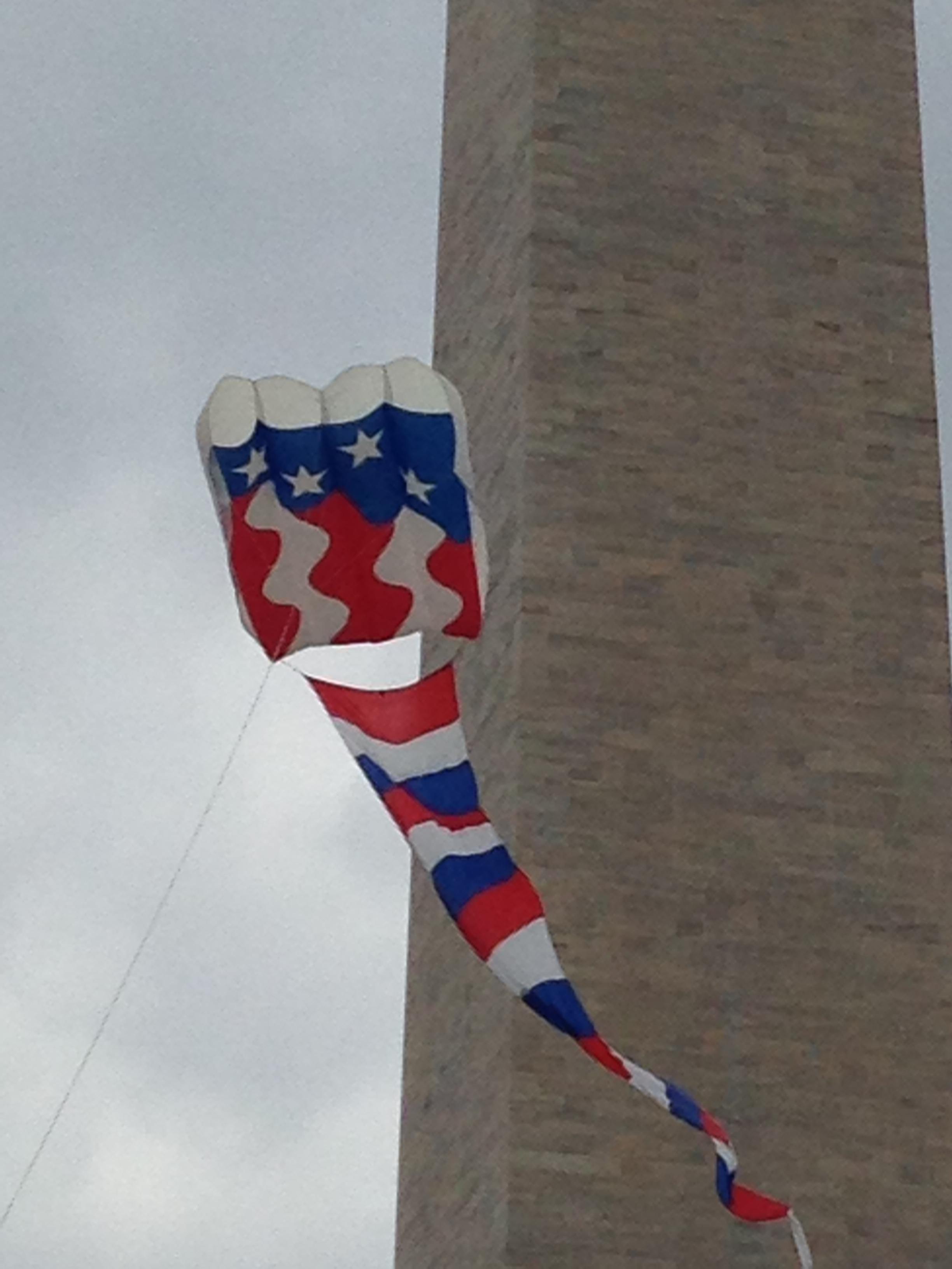 BIG American Flag Kite