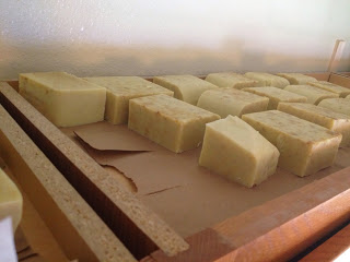 Honey Oatmeal Soap.... curing.