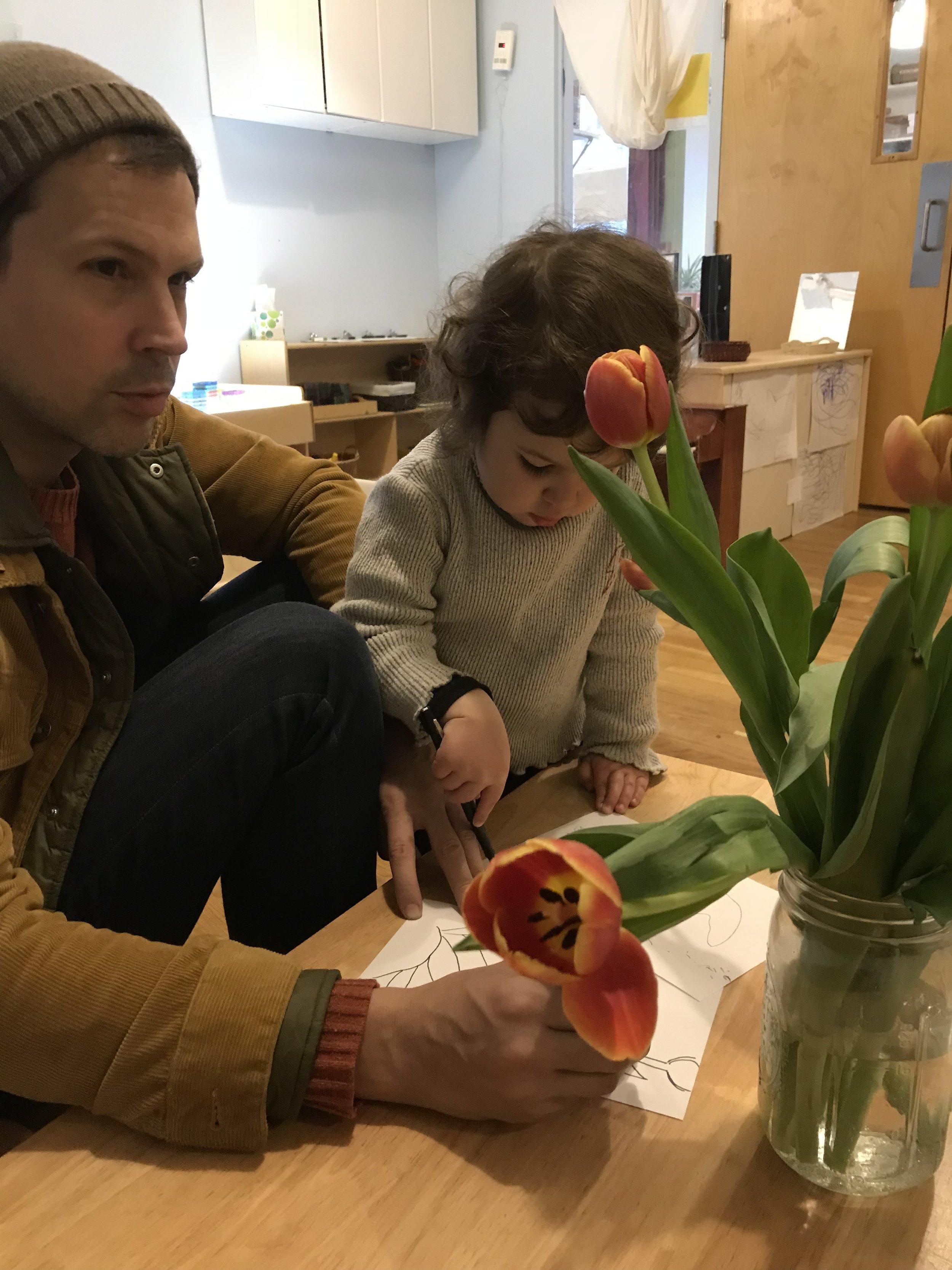 Pollination with Justin (Lola's Papa) -