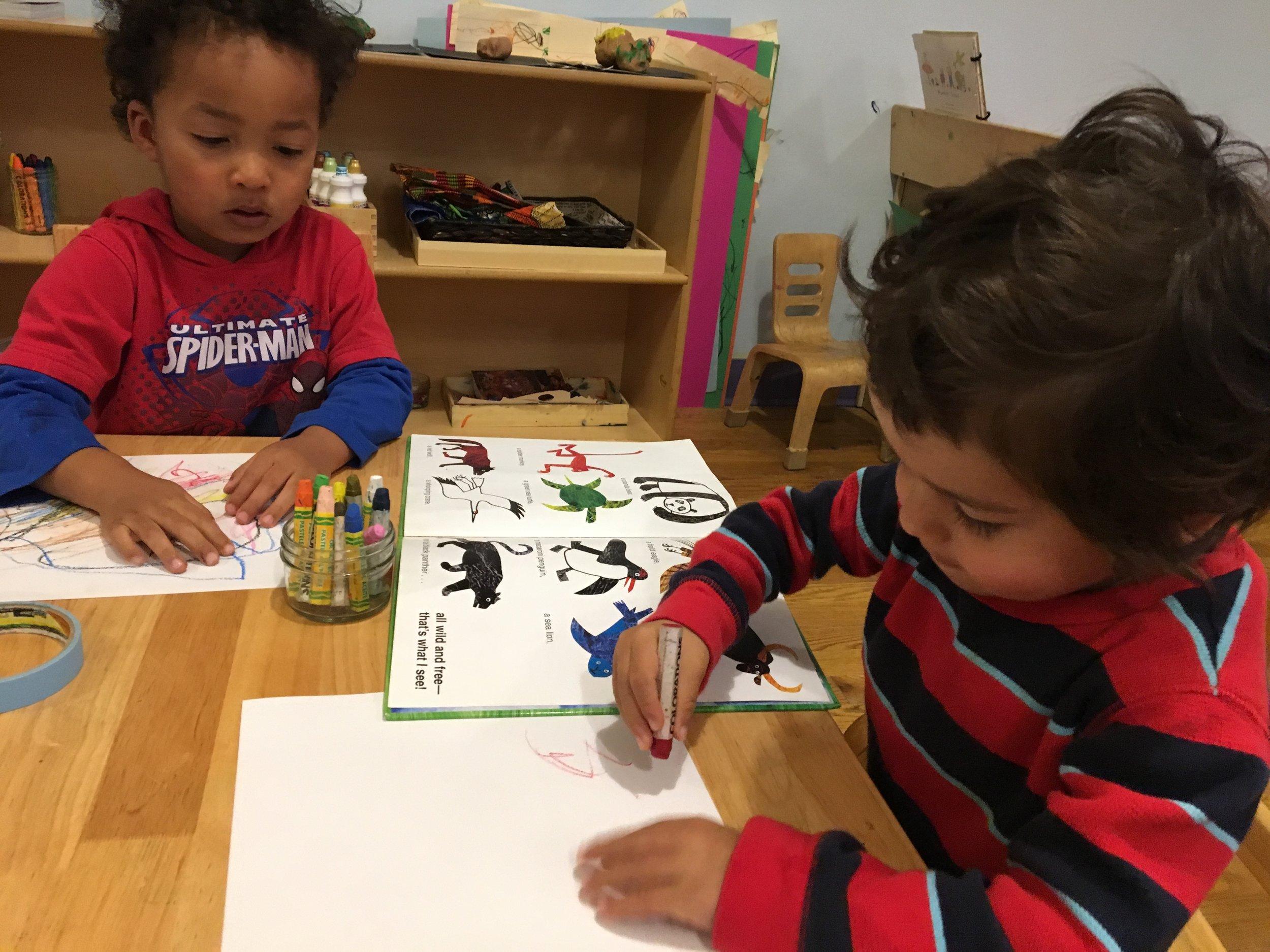 - Sketching animals