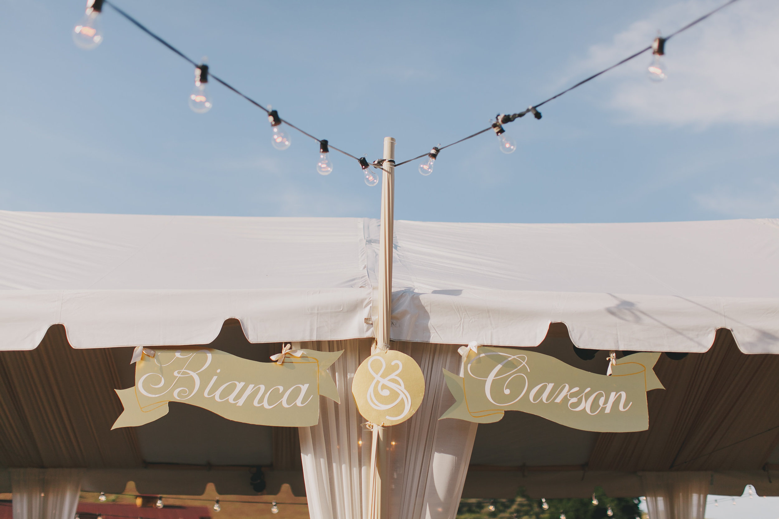 Carson Bianca Wedding by Jake and Necia Photography-11 receptiondetail-0082.jpg