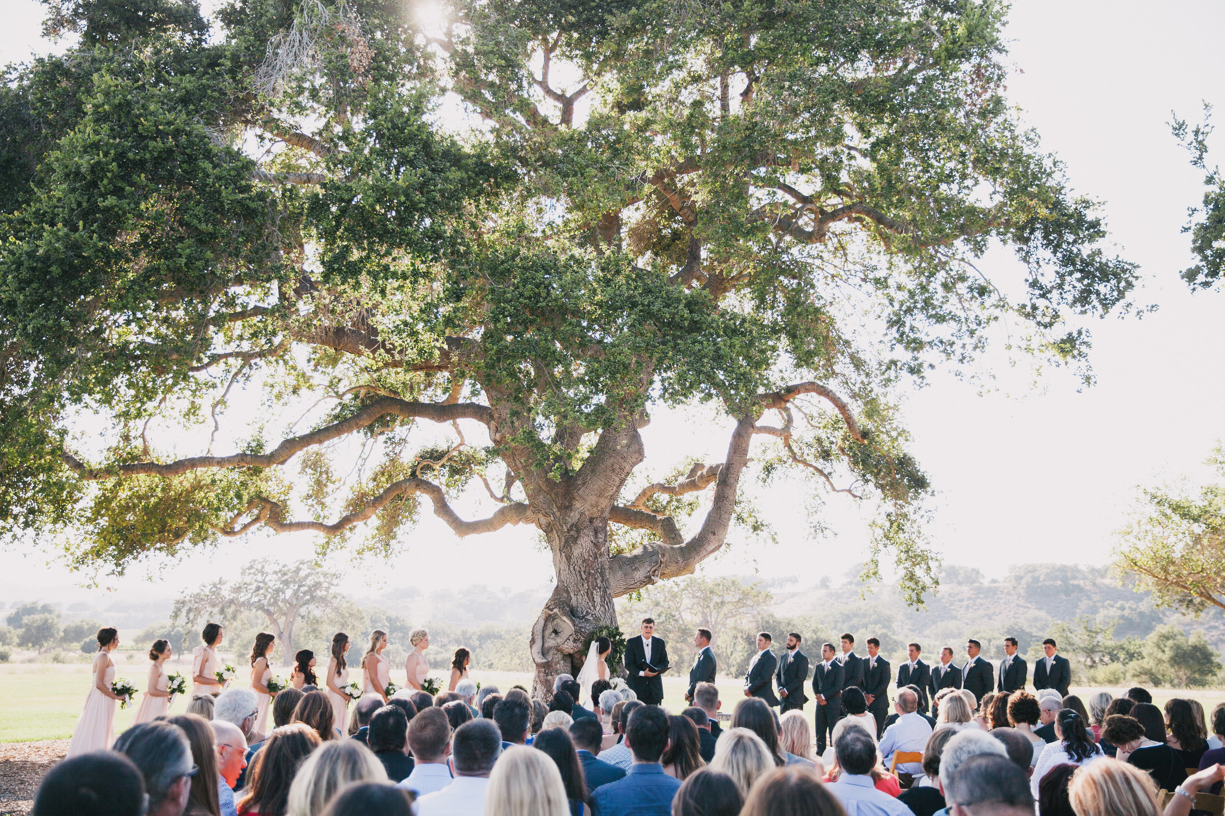 Ross Wedding-0196.jpg