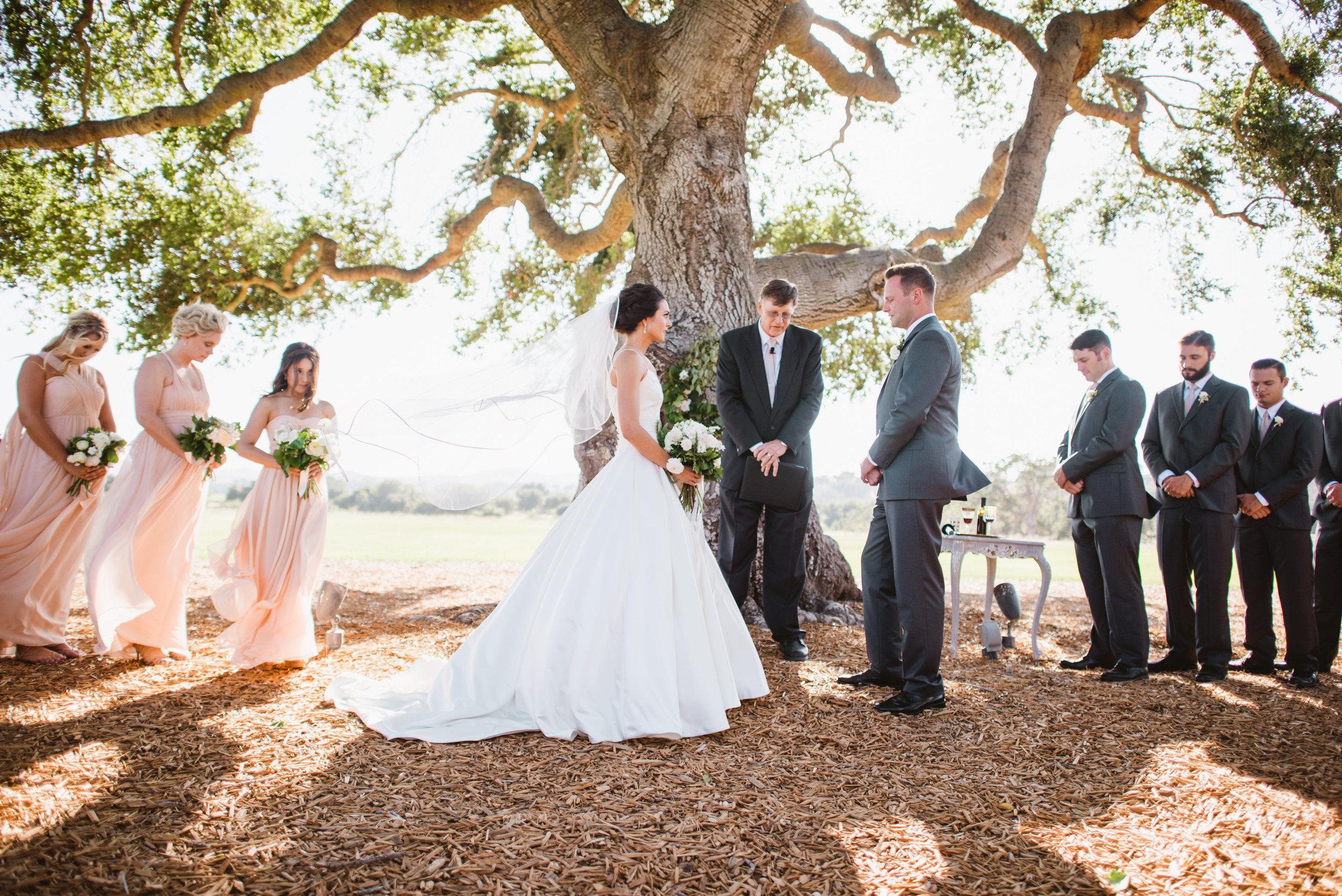 Ross Wedding-0186.jpg