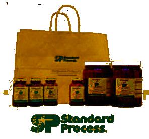 standard-process1.png