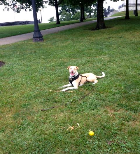 Loving some park time.