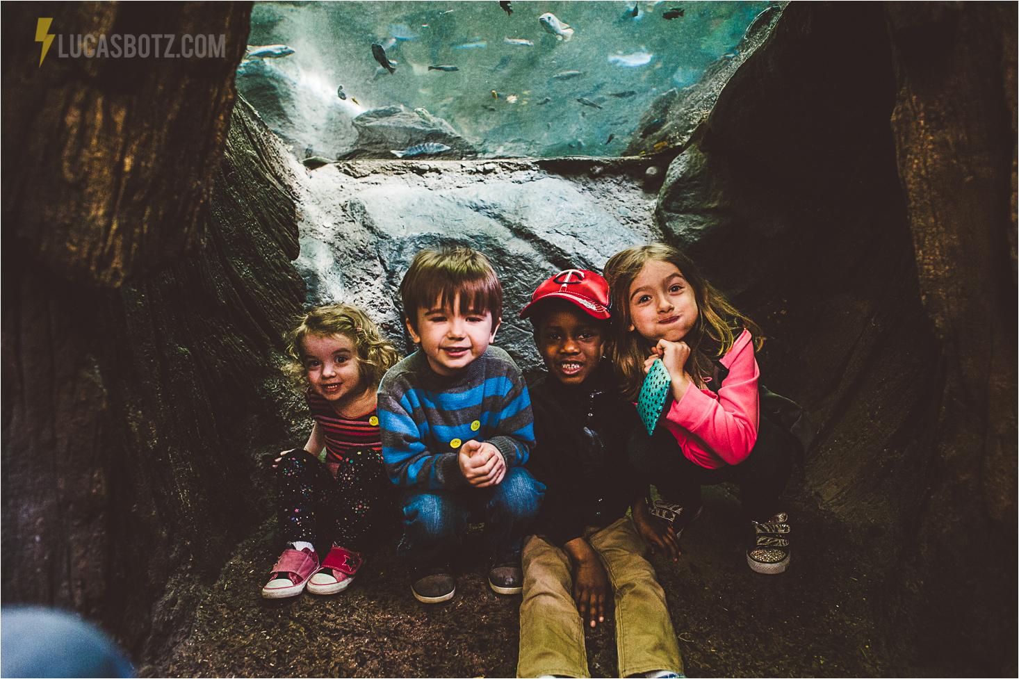 kids zoo.jpg