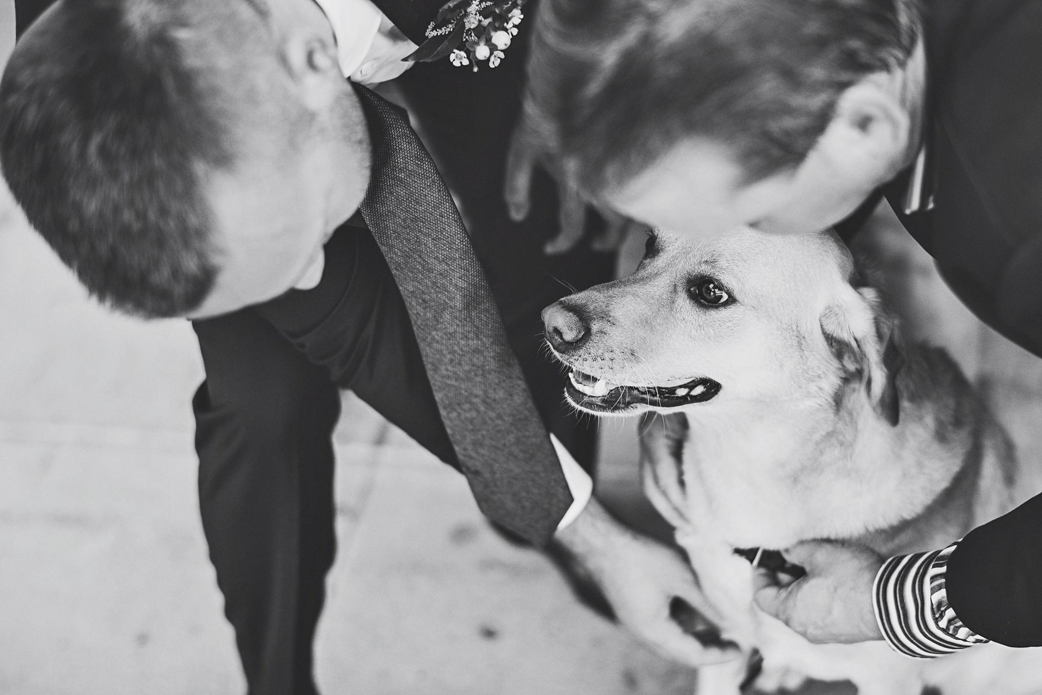 best_wedding_photography_2017_by_lucas_botz_photography_066.jpg