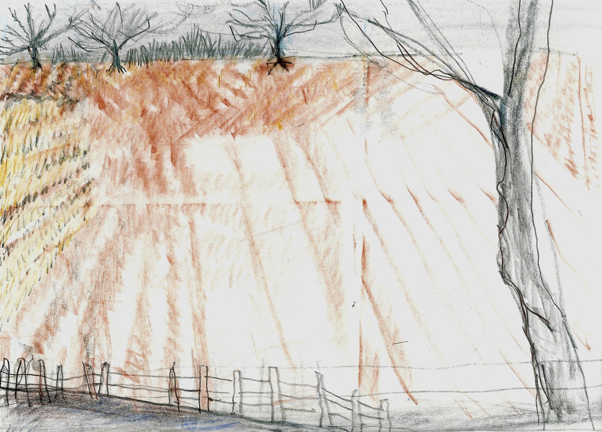Skylark landscape 1.jpg