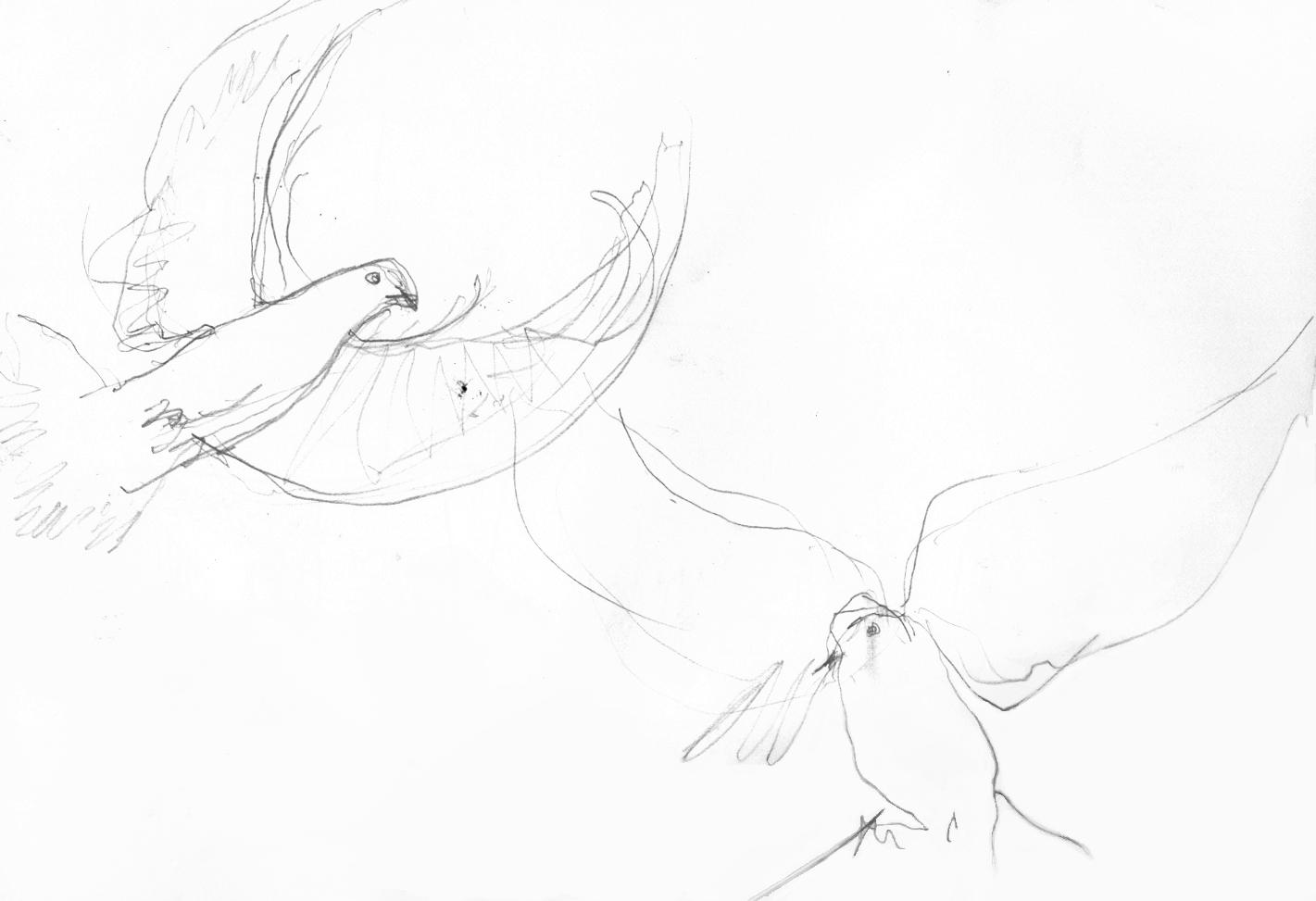 pencil sketch 2 birds.jpg