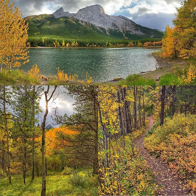 "Afternoon hike to Wedge Pond, somewhere in Kananaskis Canada. Funny story, we pulled in to this big beautiful campground and it was mostly empty cause we're in a less touristy part of the region and it's nearing end of the season. So, we had our pick of hundreds of sites. We drove through the entire place, ""testing"" each spot to see how it feels and ensuring we had a great view through our bedroom window in the morning. After much deliberation we pull in to the perfect spot and there is a huge pile of fresh bear poop right in it! There are warning signs everywhere about a bear in the area and we're thinking, ""great, he's marked his territory and we are consciously choosing to park in it."" We deliberate again and finally decide to find a park maintenance person,  and we were laughing so hard we couldn't even get the question out! ""There's fresh bear poop in our camp"". Without hesitation she says, ""No worries, I'll come clean it up"". Still laughing we say, ""No! We don't care about the mess, we just want to know if camping right there is a BAD idea!"" She laughed with us now, ""That black bear has crapped in almost every site in this place! I've been following it around for weeks. Look at it this way, bears don't poop where they eat, right?"" We laughed and felt some relief. Ok, we're staying then."
