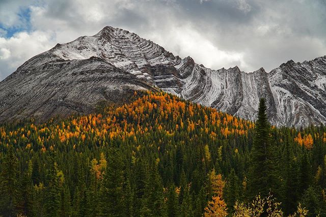 We absolutely fell in love with this mountain pass! The fresh dusting of snow and sprinkling of fall colors was just glorious!