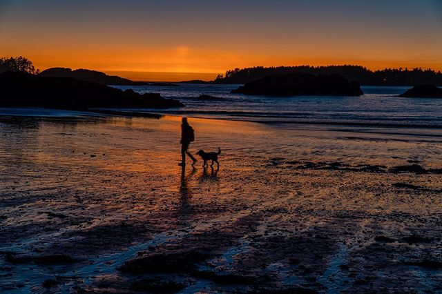 Silhouettes at sunset. We have been in Tofino, on Vancouver Island and in awe of the beautiful beaches and sunsets. A few days ago Clare and I went surfing at the famous Cox beach. It brought back some great memories of growing up surfing in Hawaii. Serenity is here.
