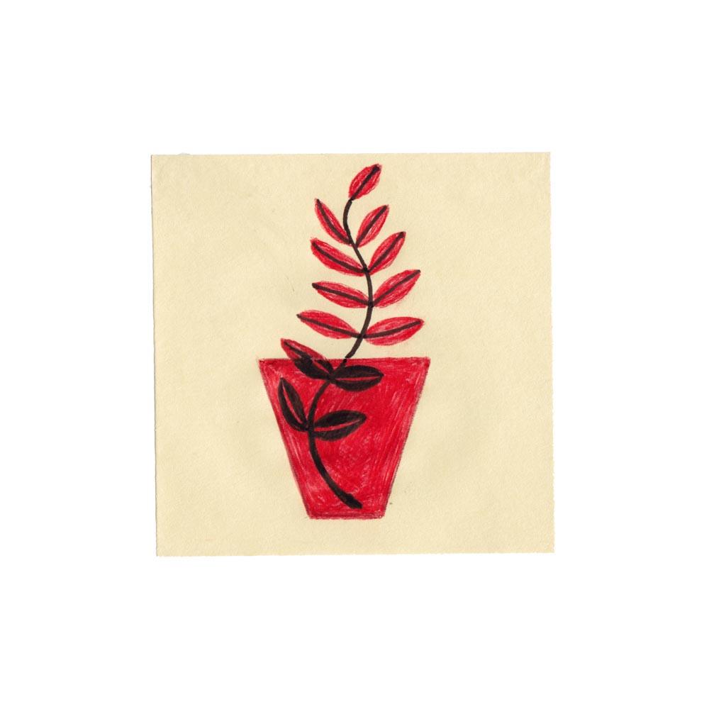 redplant.jpg