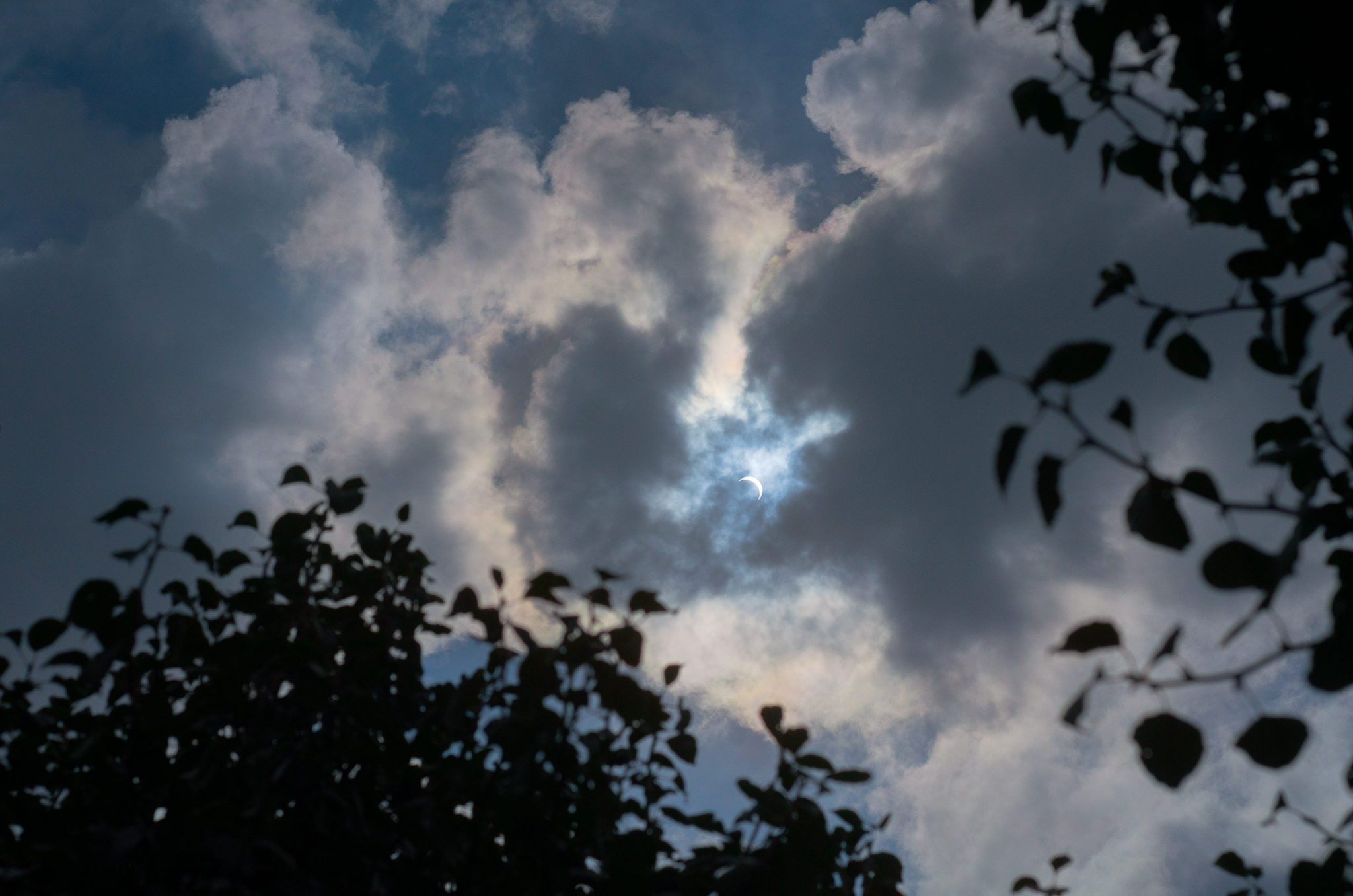 Solar Eclipse (4 of 14).jpg