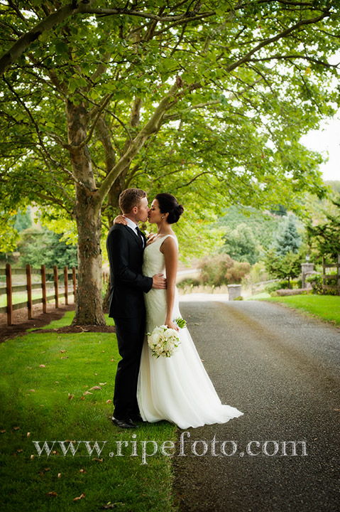 Portrait of bridal couple by Ripe Photography under trees.