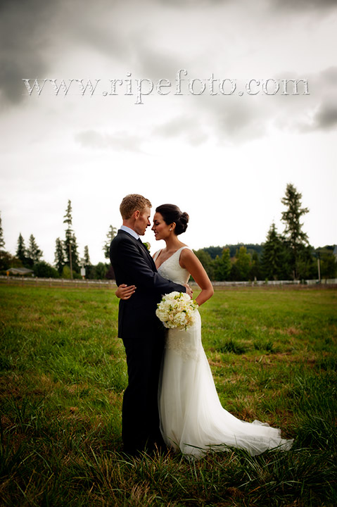 Portrait of bride and groom in field by Ripe Photography.