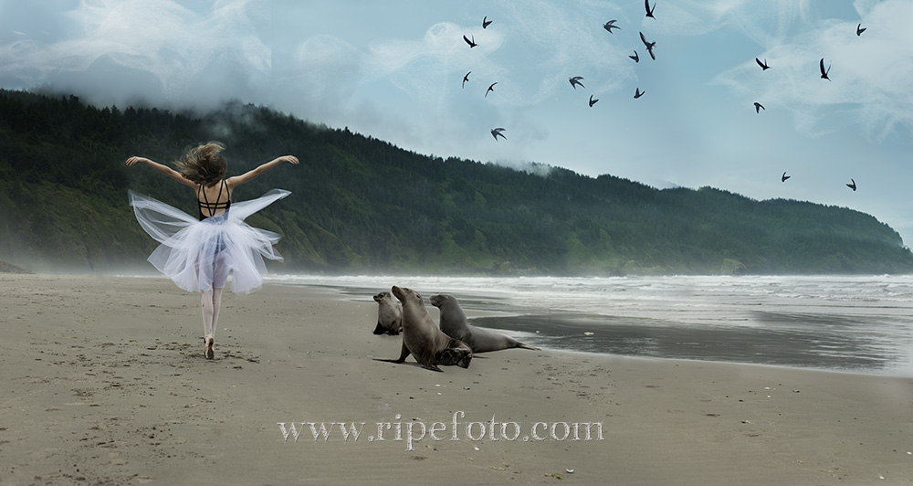 Portrait of girl dancing on beach with sea lions at Cape Lookout, Oregon by Ripe Photography.