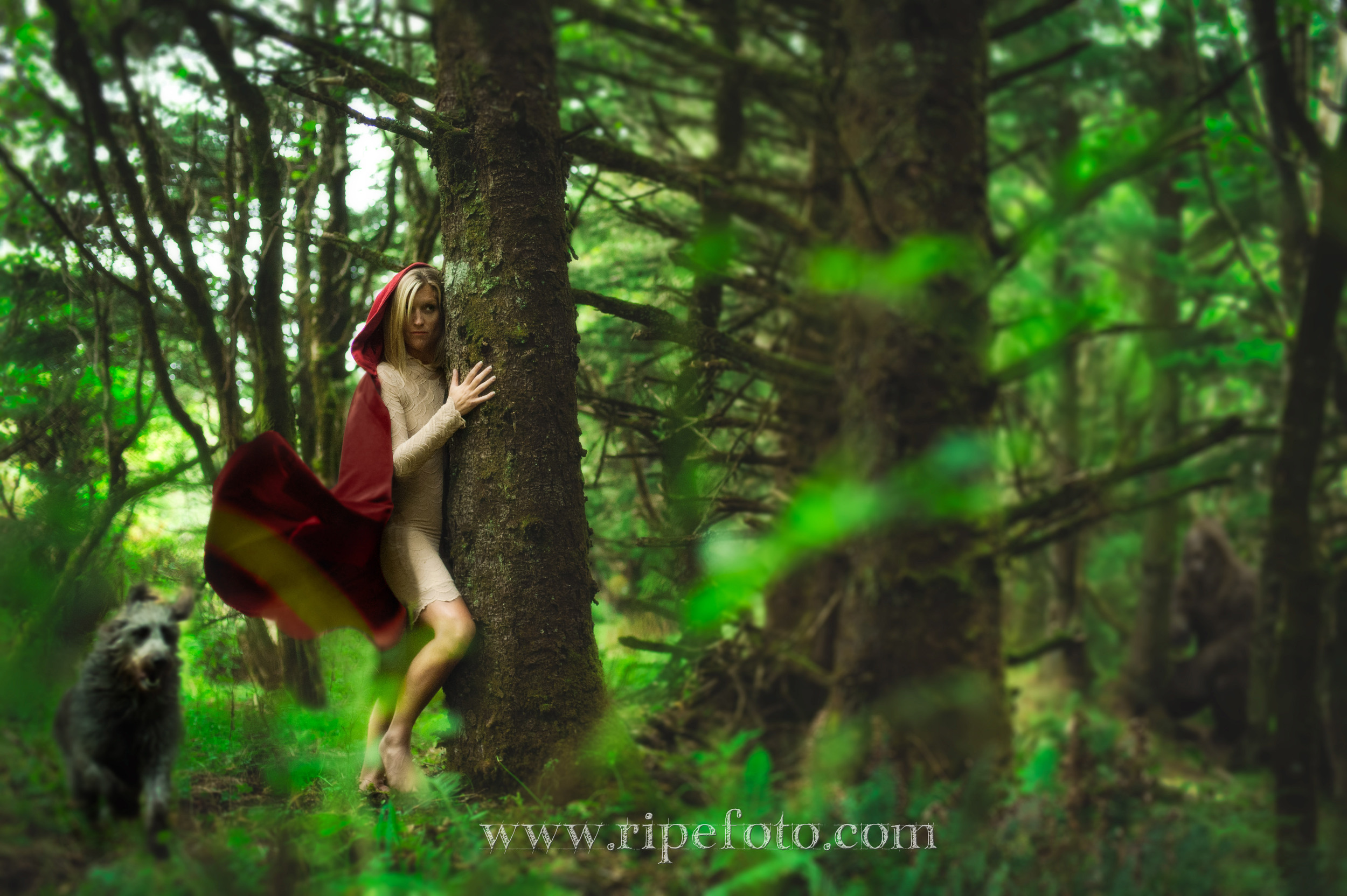 Conceptual portrait of woman and dog in Ecola State Park, Oregon by Portland portrait photographer Ripe Photography.