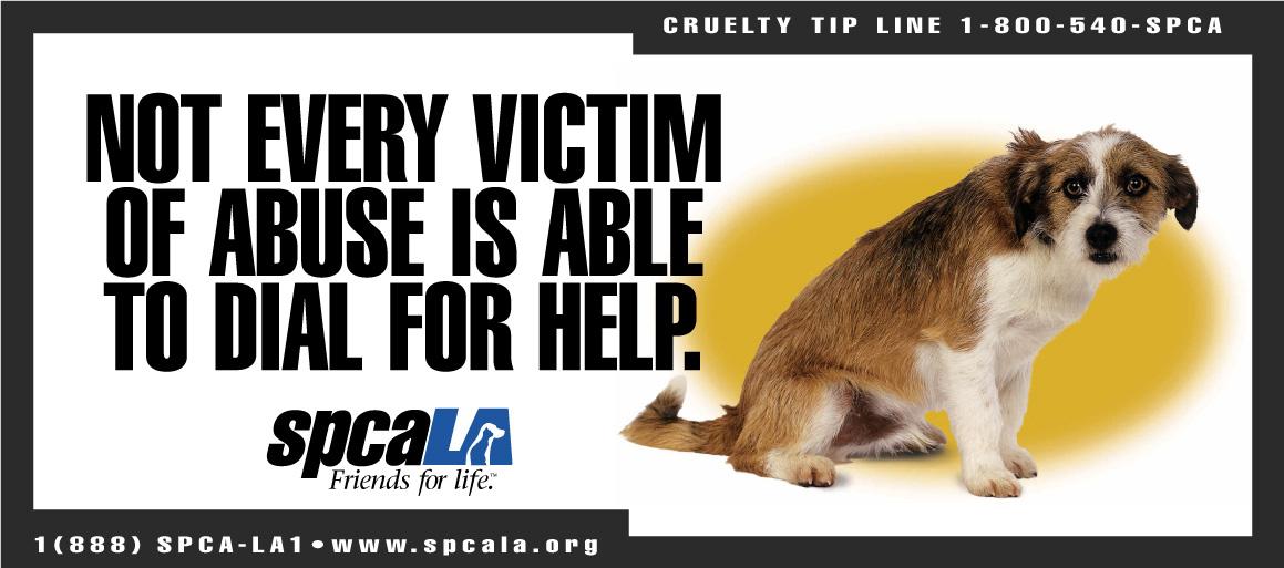 spcaLA_victim.jpg