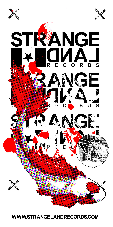 SLR_2007_SLR_beingkoi_bag.jpg