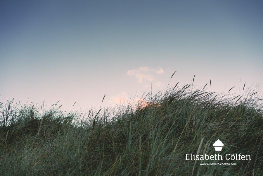 Sunset at the dunes in Denmark