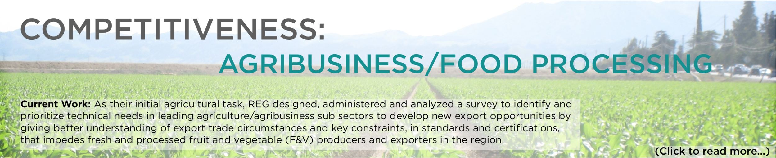 Agribusiness/Food Processing