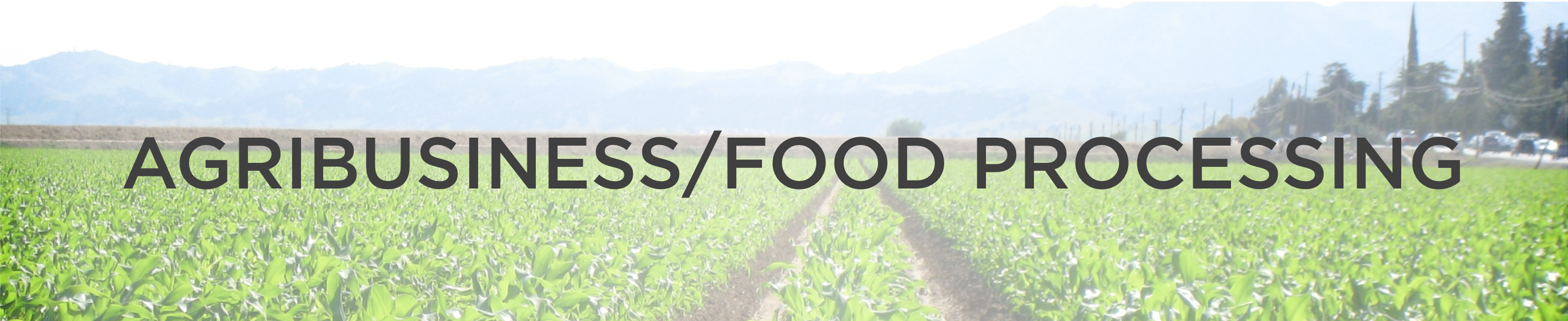 Competitveness Banner - AG-Food.png