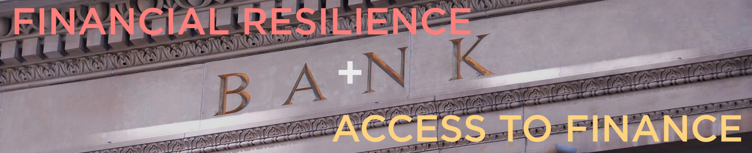 Banner - Financial Resilience - Access to Finance (Version 2).png
