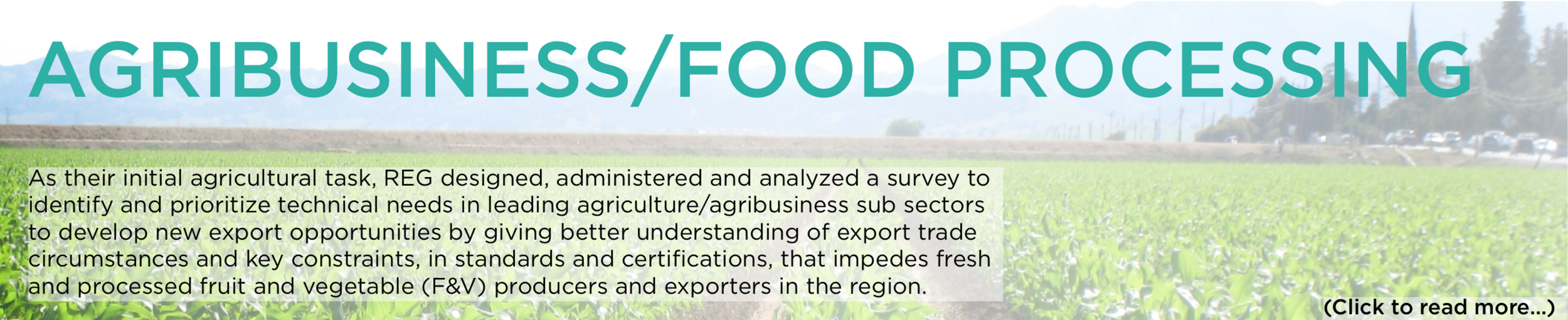 Banner - Agriculture:Food Processing.png