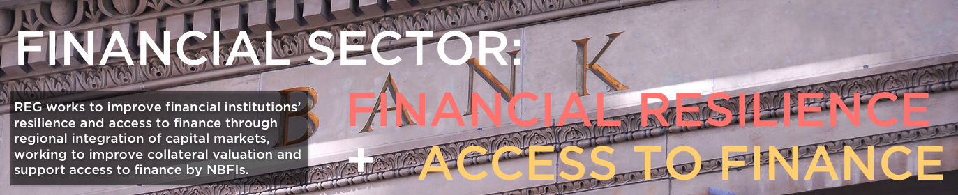 Access to Finance.png