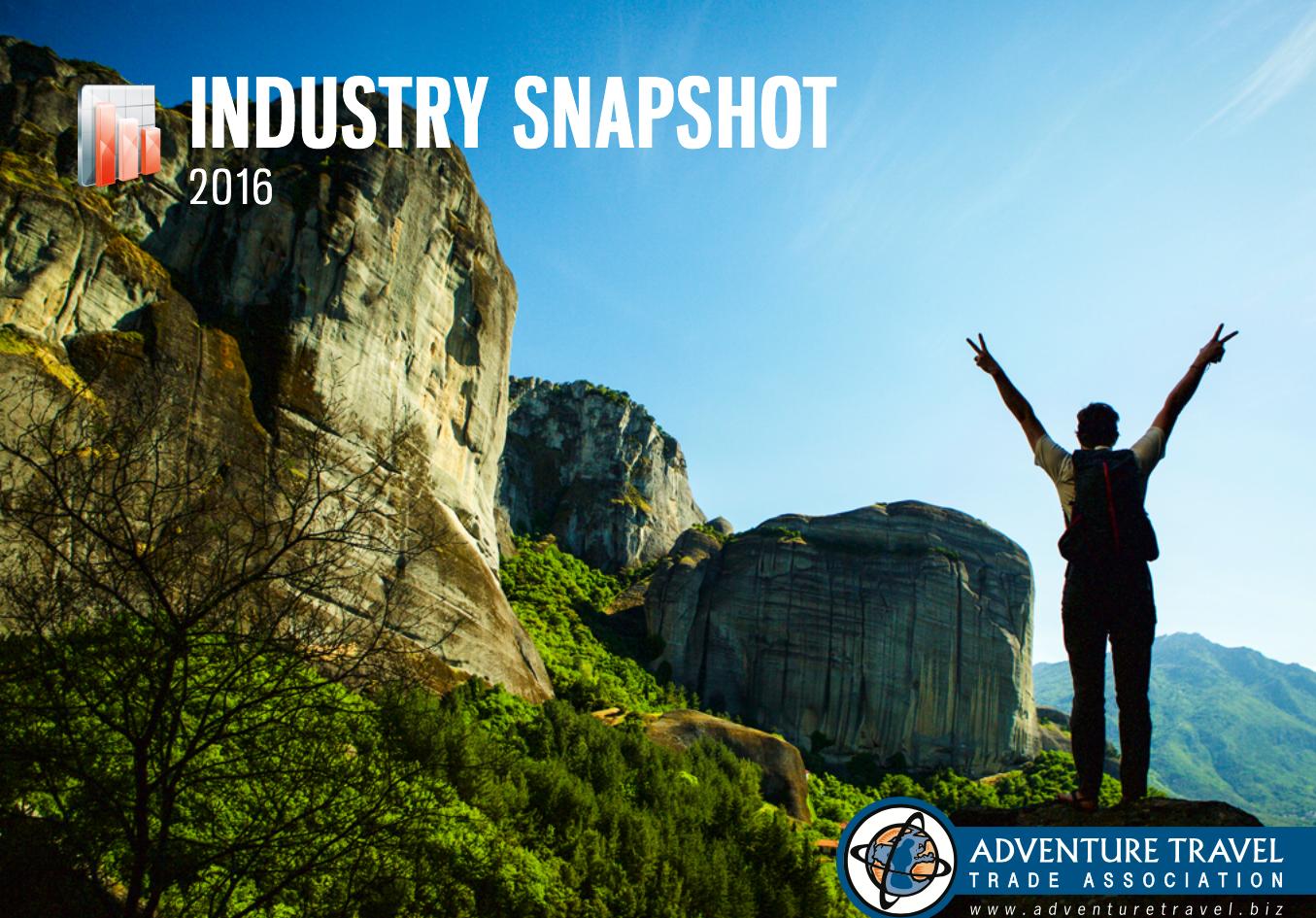 2016 Industry Snapshot
