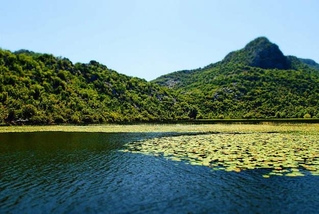 Lake Shkodra.Image by  SarahTZ / CC BY 2.0