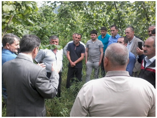 ABOVE Hazelnut growers from Azerbaijan attend a study tour
