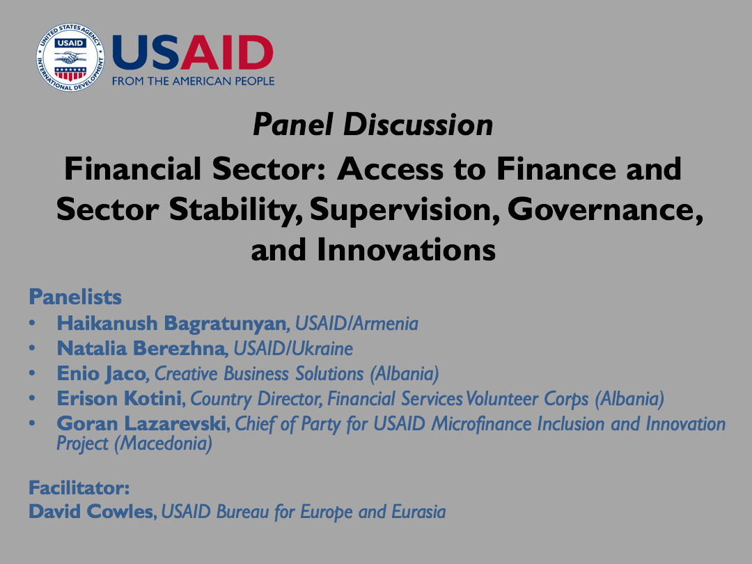 Financial Sector Panel