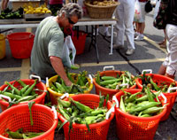 Corn at Seacoast Growers Market, Hampton, NH