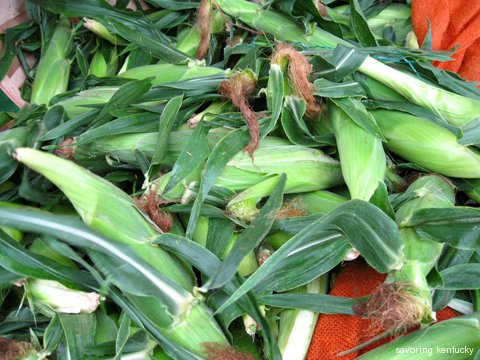 Fresh butter and sugar corn, Kyle's Farm Stand, Seabrook, New Hampshire